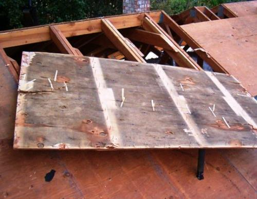 Roofing and Attic Mold