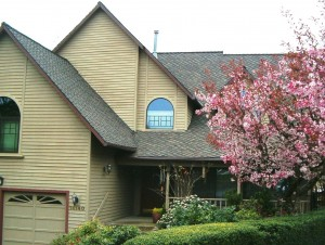 Pitched Roofs in Beaverton